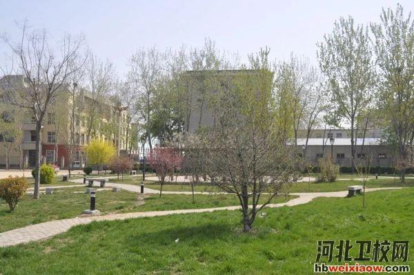石家庄市鹿泉市职业教育中心校园环境